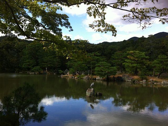 amazing! Kyoto