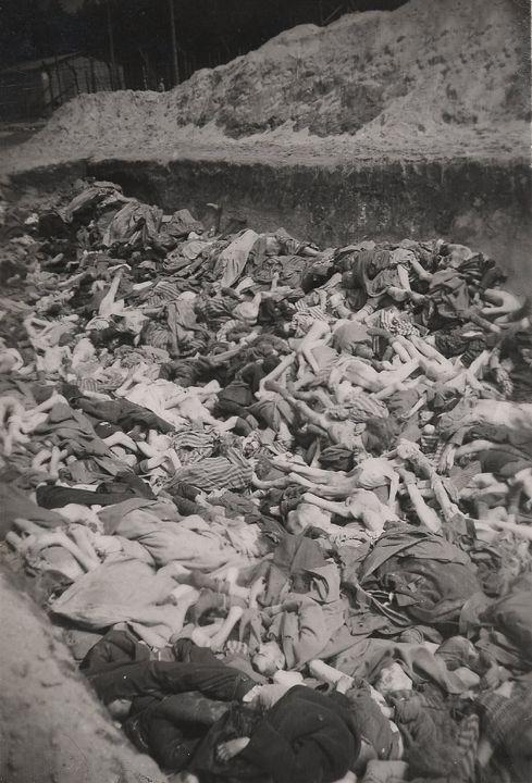 Romani genocide