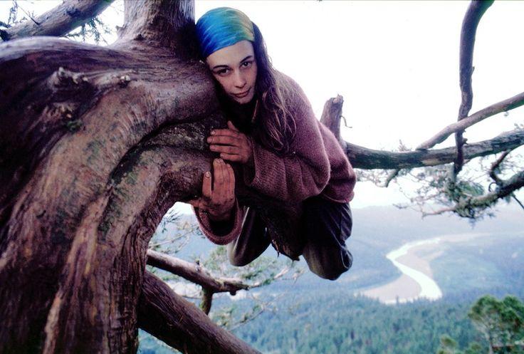 Mr Mondialisation - 2 ans perchée dans un arbre millénaire pour le sauver de l'abattage