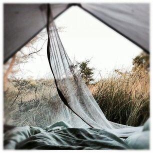 Camping au milieu des herbes folles