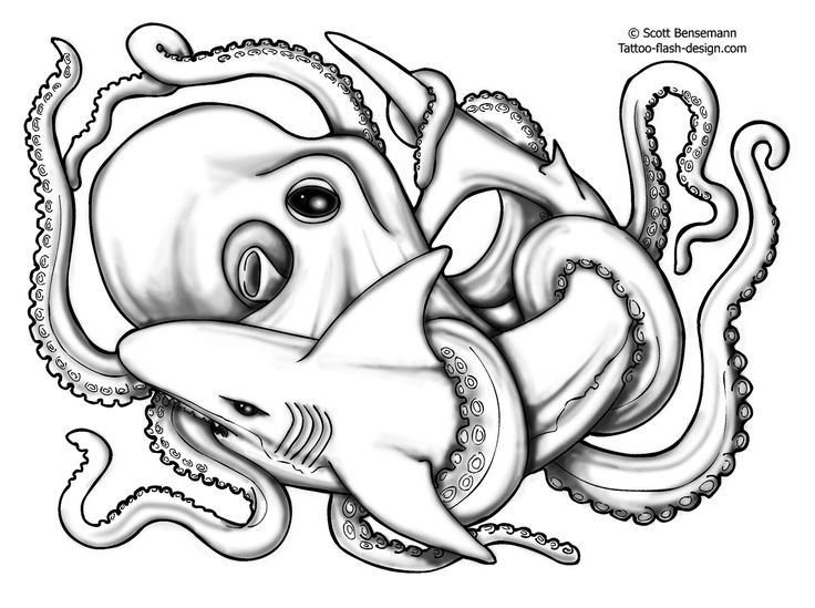 46 best Octopus Anchor Tattoo Flash images on Pinterest Tattoo