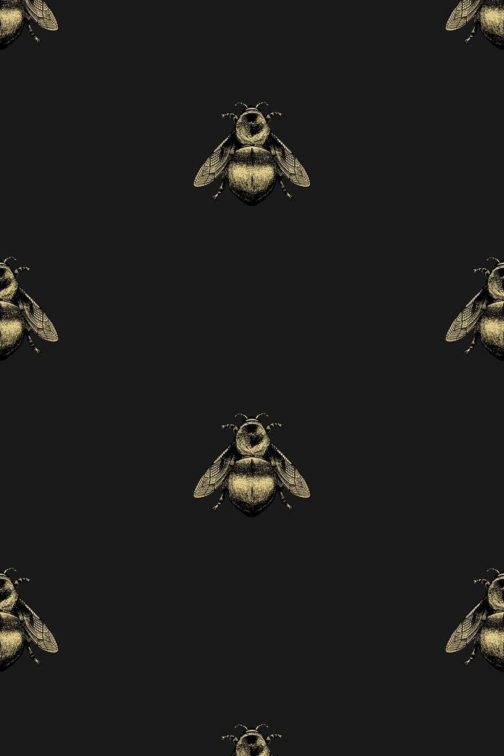 Timorous Beasties Wallcoverings - Napoleon Bee Non Woven wallpaper