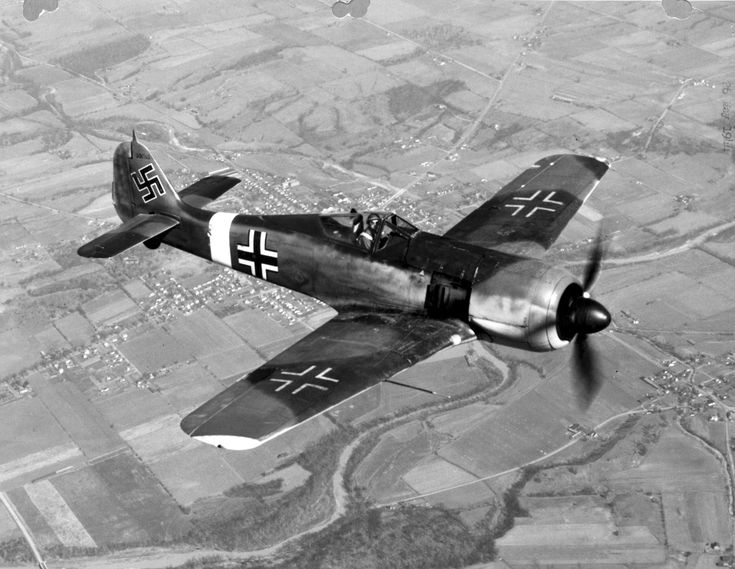 A Focke-Wulf Fw-190 Würger (Shrike) in flight.  One of the stalwarts of the Second World War, the Fw-190 combined outstanding performance with sturdy construction, making the planes useful on all fronts.  Germany even gave Japan an Fw-190 for technical evaluation.  Japanese engineers incorporated many aspects of the Fw-190 into the design of their own Kawasaki Ki-61 Hien (Flying Swallow).