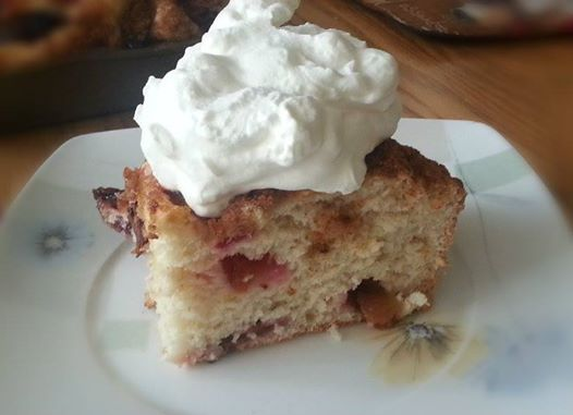 """Plum Cake--- 1 box Sunset Gourmet's Harvest Beer Bread 1 can beer 2 tsp cinnamon 1/2 cup brown sugar 1 1/2 cups sliced plums  Blend together Harvest Beer Bread mix and beer. Stir in 1 cup of sliced plums. Pour batter into a greased 9""""x12"""" pan. Arrange 1/2 cup of plums on the top of the batter. Mix together cinnamon and sugar; sprinkle over batter in pan. Bake for 35 to 40 min at 350F. Serve warm with whipping cream or whipped topping."""