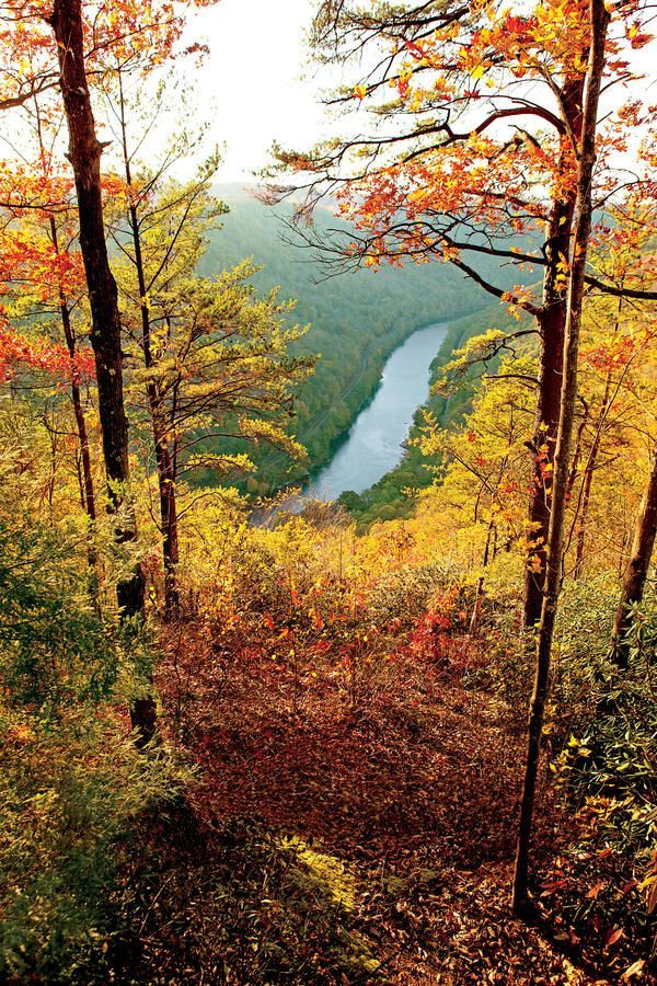 New River Gorge - We Found the South's Best Fall Color - Southernliving. New River Gorge in West Virginiais known for its white-water rafting, fishing, and hiking.