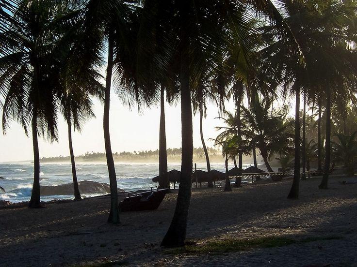 A foto da semana no blog é da Costa do Sauípe. Uma das melhores regiões para aproveitar a natureza da Bahia em família. Um cenário de mar azul areia branca e bela vegetação. ------ The photo of the week on the blog is from the Costa do Sauípe. One of the best regions to enjoy the nature of Bahia in family. A blue sea white sand and beautiful vegetation scenery. ------ #bahia #brasil #bestvacations #igtravel #instatravel #photooftheday #picoftheday #traveladdict #travelblog #travelgram #trip…