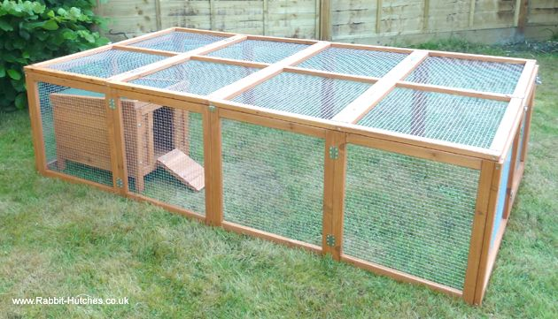 1000 images about large run hutch combo on pinterest to for Outdoor guinea pig cage