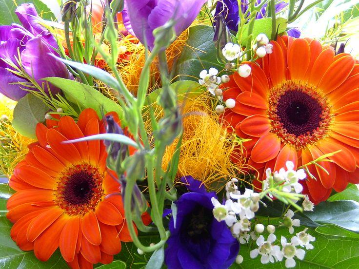 Google Afbeeldingen resultaat voor http://www.eenspeciaalmoment.nl/images/5.jpg