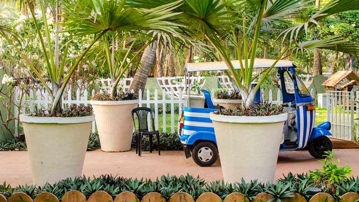 Check out this cool stripy auto-rickshaw at Vivenda dos Palhaços, south Goa. To book or enquire: https://www.tripzuki.com/hotels/vivenda-dos-palhacos-goa/
