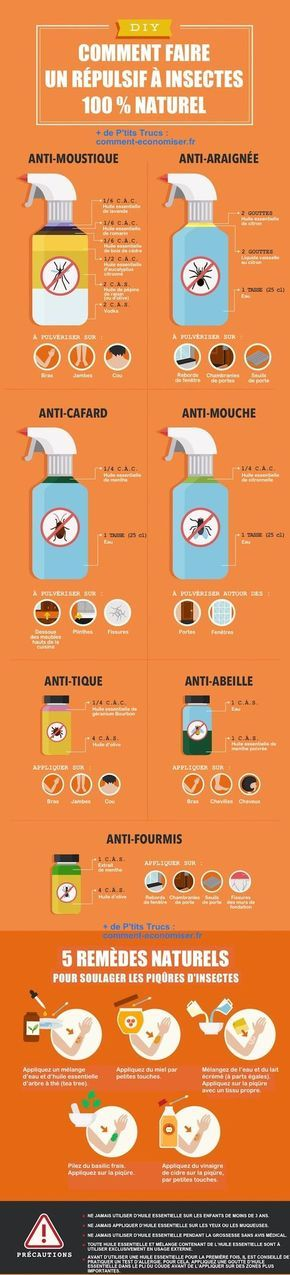 Voici les meilleures recettes naturelles et sans produits chimiques pour vous débarrasser des insectes !