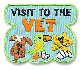 "Visit To The Vet $0.74 - Tie into Girl Scout Daisy Petal ""Respect Authority"""