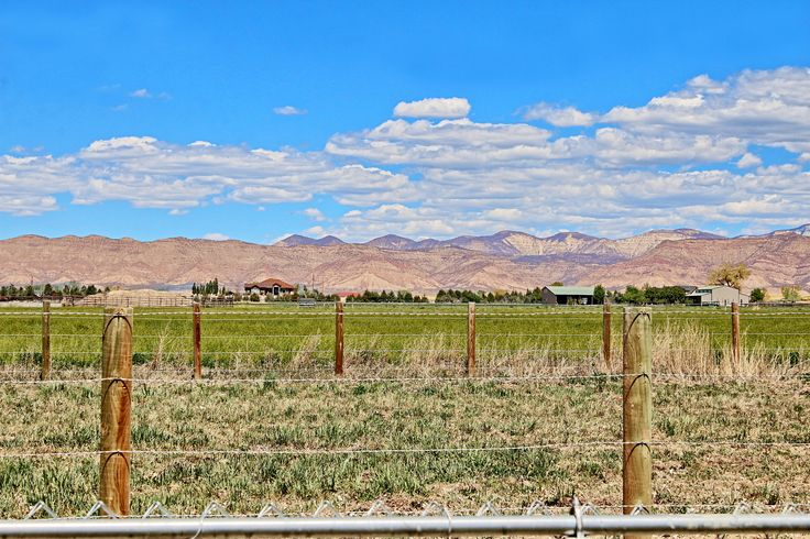 Horse Property For Sale In Fruita Co