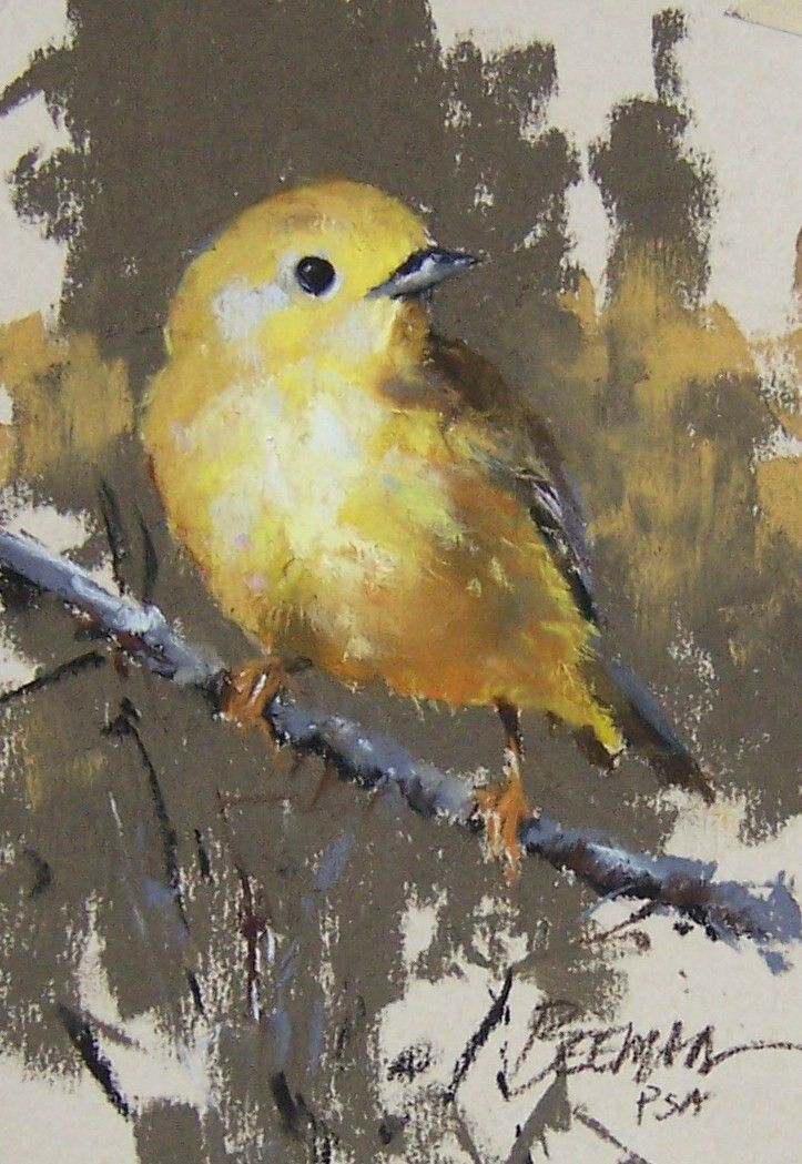 "Warbler - Pastel Painting by Mike Beeman  (Looks like the ""Goldfinch"" we have here in Southern Ontario.)"