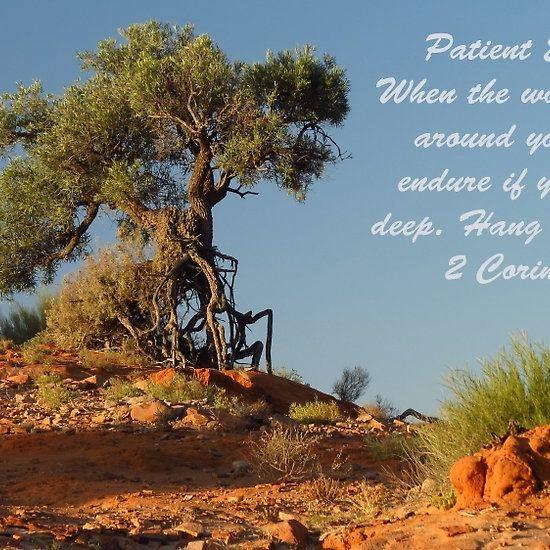 Endurance in the desert