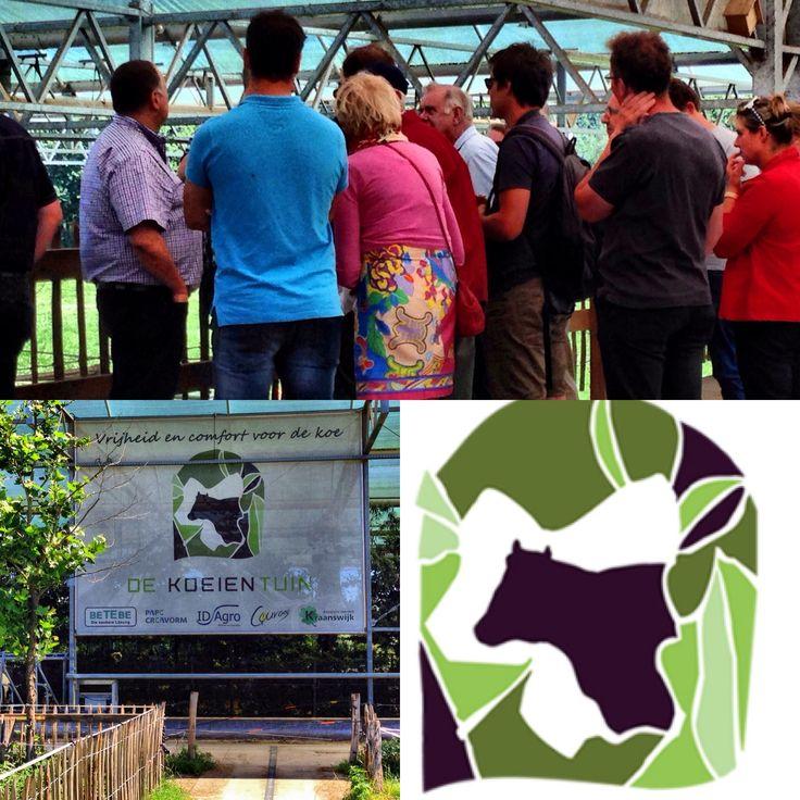 #Koeientuin Groenlo excursies op afspraak
