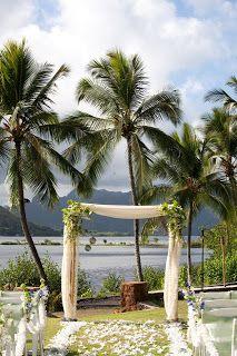 24 Best Wedding Arch Ideas Images On Pinterest Wedding