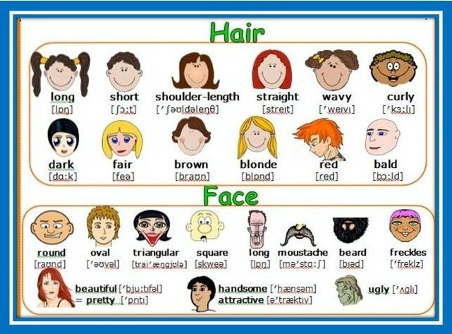 Hair and Face vocabulary
