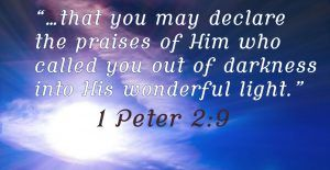 1 Peter 2:19 from darkness into light devotional