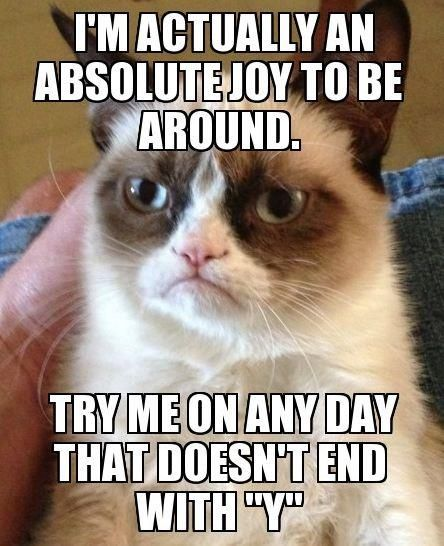 "I'm actually an absolute joy to be around.  Try me on any day that doesn't end with ""Y""."