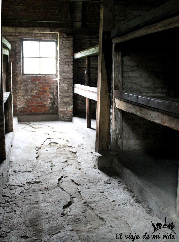 Literas Auschwitz Polonia