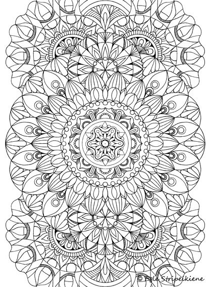 Coloring Book For Adults COLORS OF CALM By Egle Stripeikiene Publisher Almalitteralt