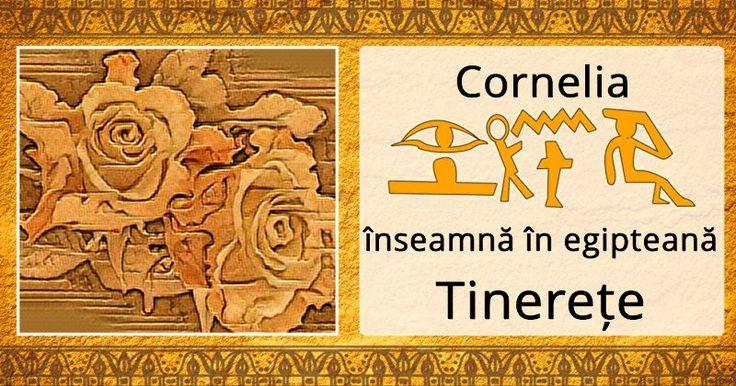 Care e semnificația numelui tău în Egiptul antic?