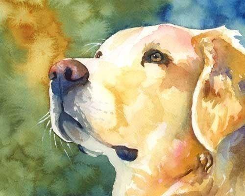 Golden Retriever impresión del arte de la acuarela por dogartstudio