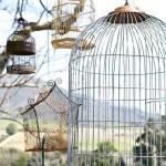 Bird cages, ideasmag.co.za