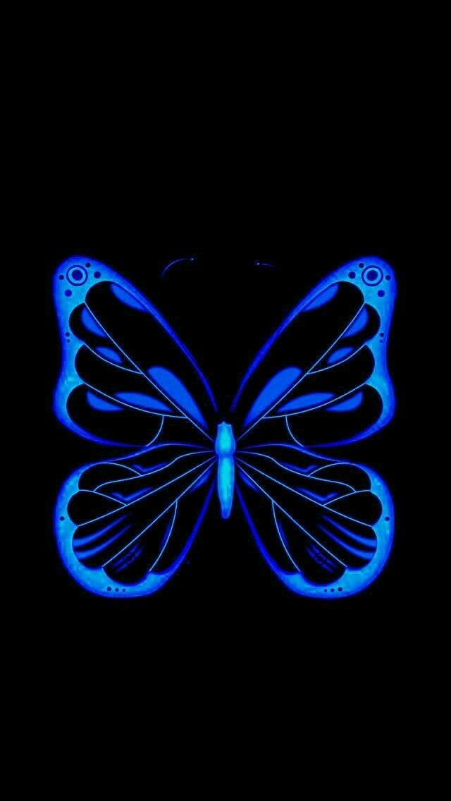 Blue And Black Butterfly Blue Butterfly Wallpaper Butterfly Wallpaper Butterfly
