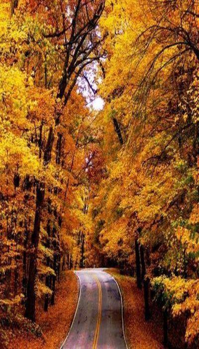 Autumn Adventure | #MichaelLouis - www.MichaelLouis.com