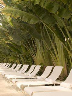 Semaine travel inspiration: Miami