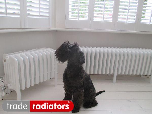 radiator 300mm breed