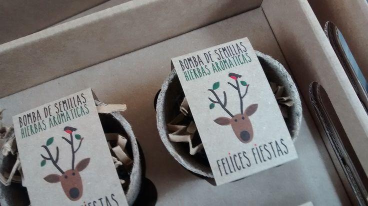 Greenbombas aromáticas para cultivar la amistad: tu mejor regalo !!!