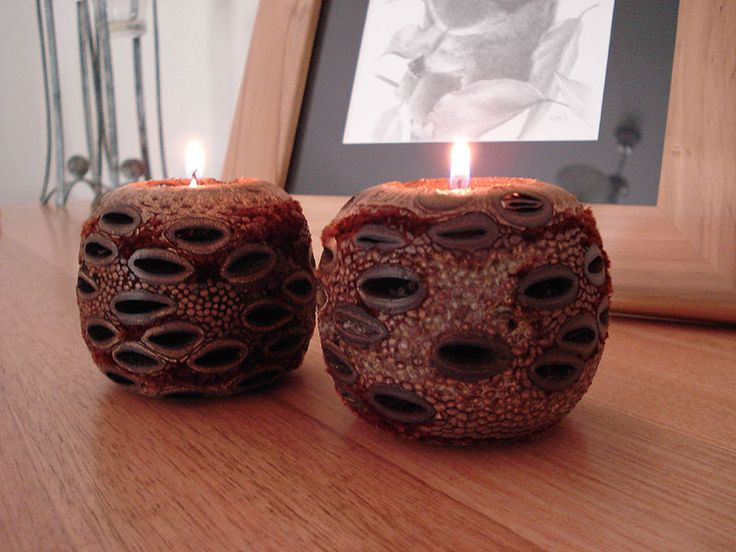 Banksia Cone Ball Tea-Light Holders.  Uniquely Australian, sustainably sourced and with tea-lights included. $37.95 http://www.greengiftsaustralia.com.au/shop/index.php?main_page=product_infocPath=2_14products_id=3