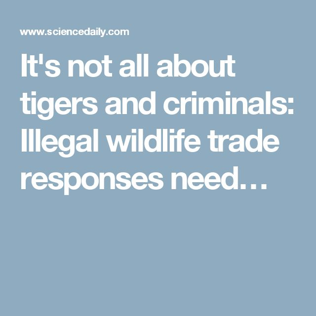 It's not all about tigers and criminals: Illegal wildlife trade responses need…
