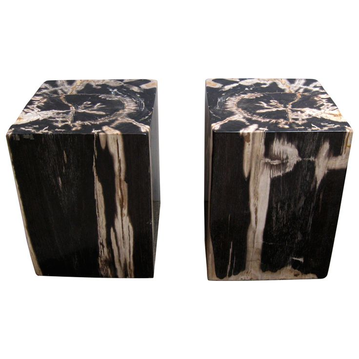Pair Petrified Wood Stools / Side Tables