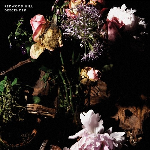 The record is available at Stereo Studio  from Descender (Vinyl) - LP - Musik