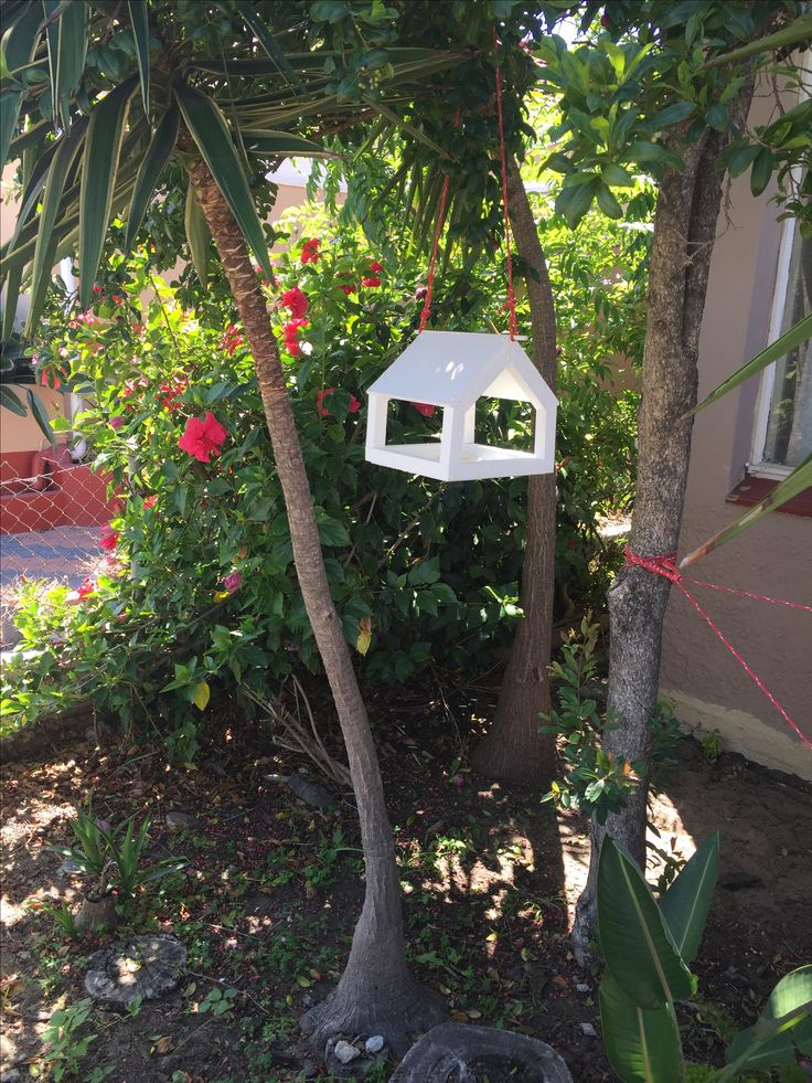 Simple diy birdhouse I made from offcuts. No plans needed, just from my head.