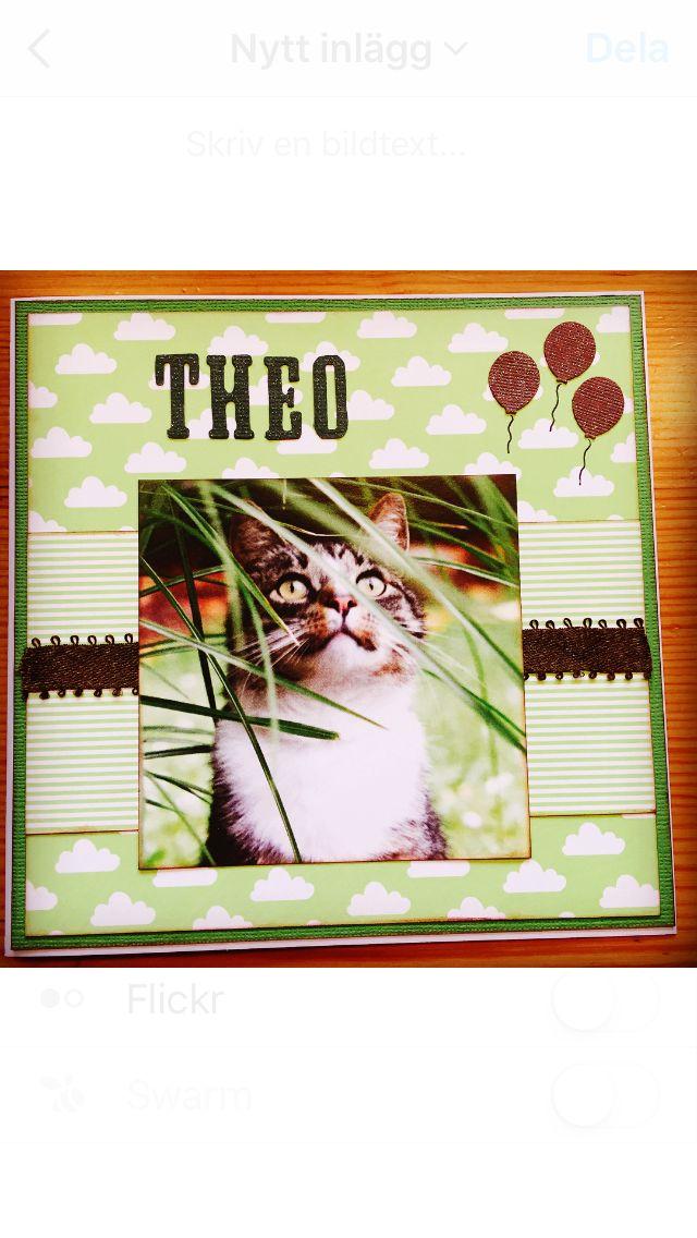 Kort till Theo 2år som älskar katter