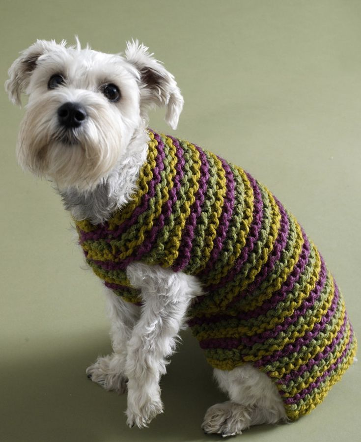50 best Knitting Patterns for Dogs images on Pinterest | Dog ...