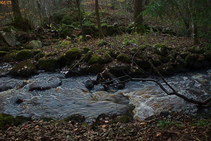 Litet vattendrag