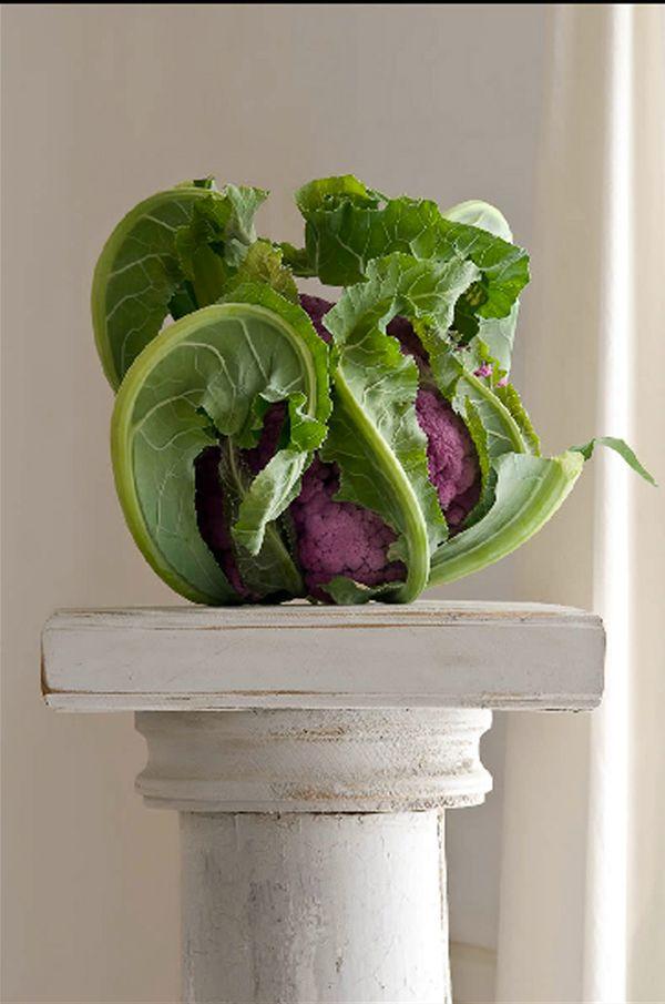 Purple Cauliflower © Lynn Karlin