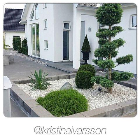 Bildresultat för trädgårdsideer