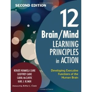 the ten principles and brain development Filled with simple, everyday actions we can take to avoid disease, promote vitality, and prevent dementia and late onset alzheimer's, the aging brain is an easy-to.