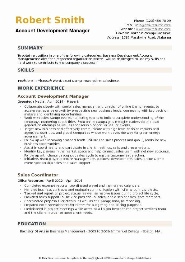 Business Development Executive Resume Fresh Account Development Manager Resume Samples