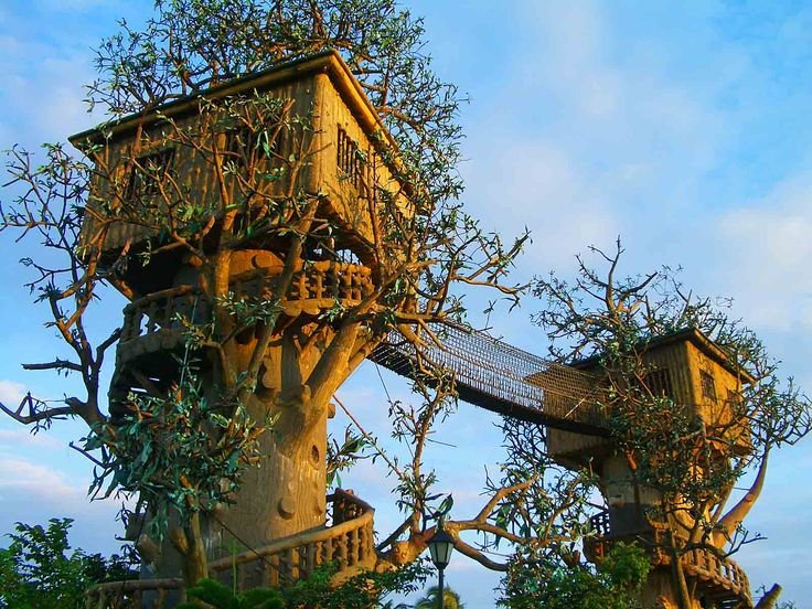 ... How To Design An Astonishing Tree House For Relaxing Treatment Gallery  #Treehouse Pinned by www.modlar.com