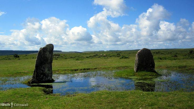 Marsh surrounding the Nine Stones Circle, Bodmin Moor, Cornwall