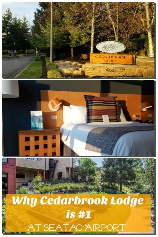 If you're traveling to or from SeaTac International (United States), be sure to r ead this and find out why Cedarbrook Lodge is your best option! #seatac #airporthotel #bestplacetostay #cedarbrooklodge