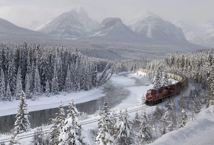 Грузовой поезд в месте под названием Изгиб Моранта, провинция Альберта, Канада.