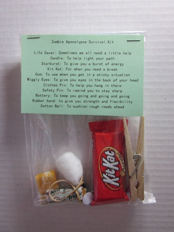 Zombie Apocalypse Survival Kit by StacysTreasurers on Etsy ...